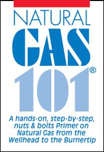 Nat Gas 101 Logo